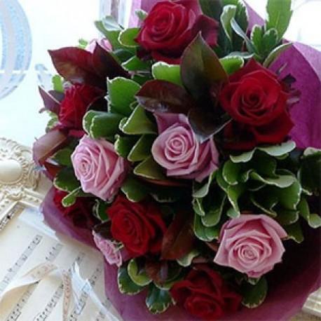 Dozen Pink & Red Roses
